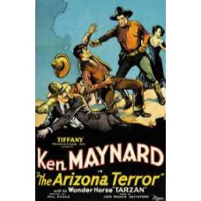 ARIZONA TERROR, THE   (1931