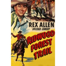 REDWOOD FOREST TRAIL 1950